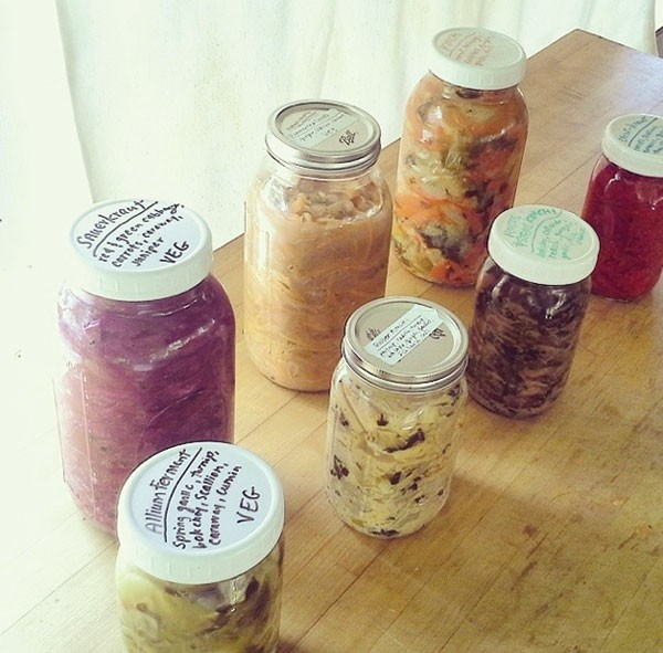 Fermentation on Wheels bus, Tara Whitsitt's