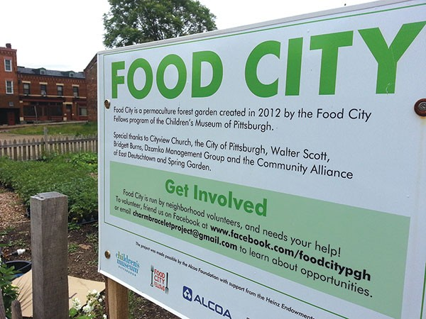 """Food City,"" a community garden on Tripoli Street on the North Side"
