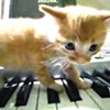 """From """"Super Mario Clouds"""" to cats playing Schoenberg, YouTube packrat Corey Arcangel's work comprises a fascinating retrospective at the Carnegie."""