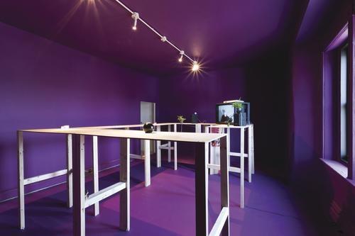 "Jerstin Crosby's installation work ""ON THE INSIDE."""