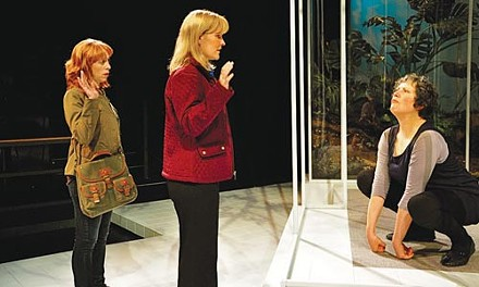Mothers, lovers, apes: Theo Allyn, Kelly McAndrew and Laurie Klatscher in City Theatre's Precious Little - PHOTO COURTESY OF SUELLEN FITZSIMMONS
