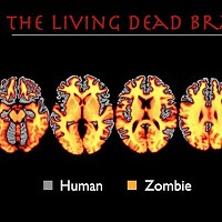 Neuroscientist Addresses Zombie Science