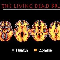 Neuroscientist Addresses Zombie Science