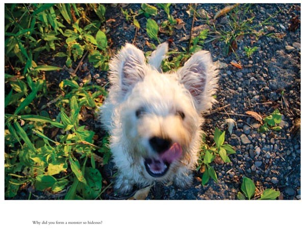 Quite the wag: an image from Charlee Brodsky's Good Dog series incorporating text from Mary Shelley's Frankenstein