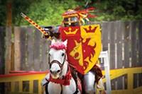 renaissance festival, pittsburgh, west newton, fair, belly-dancing, eat flames, bells
