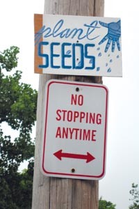 Seed planting in Troy, New York: street art by Josh MacPhee - COURTESY JOSH MACPHEE