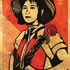 "For Shepard Fairey, it's a long road from ""Obey Giant"" to ""Obama Hope."""