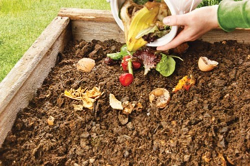 sl_composting_41.jpg