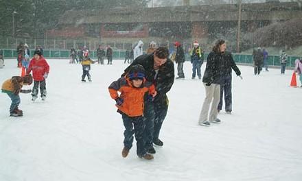 10_sl_skating.jpg