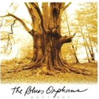 The Blues Orphans reach beyond the blues on <i>Root Rot</i>
