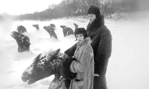 The Hollies Snowshoe Club visits the frozen horse heads in Guy Maddin's My Winnipeg.