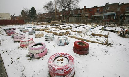 The Ladora Way community garden is bedded down for the winter. - HEATHER MULL