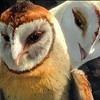 The Legends of the Guardians: The Owls of Ga'hool