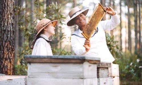 43_secret_life_of_bees.jpg