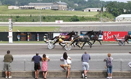 The state's horse-racing industry needs more fan watching and betting on races. - HEATHER MULL