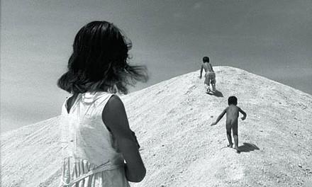 44_film1_araya.jpg