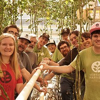 Hearts of Glass follows an indoor farm striving to create an inclusive workplace for people with disabilities