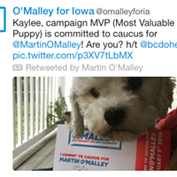 Campaign 2016's Silly Season: A Weekly Tweet Round-Up Oct. 23