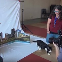 Behind-the-scenes video of Pittsburgh City Paper's Internet Cat Video Festival cover