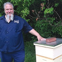 Bill Larkin, of Arsenal Cider, with his bees