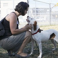A dog-walking volunteer at Animal Rescue League