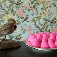 """Motherbird,"" a photograph by Joy Christiansen Erb"