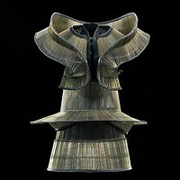 "A dress and collar from Iris van Herpen's ""Chemical Crows"" collection (2008)"