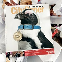 This week's Pittsburgh City Paper Animal Issue cover sits on top of its inferior counterparts.