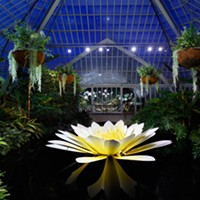 Phipps Conservatory lights up the night with extended hours for glass exhibit