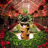 Holiday Magic! Winter Flower Show and Light Garden