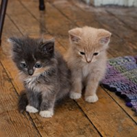 Tina and Gene are one-month-old siblings.