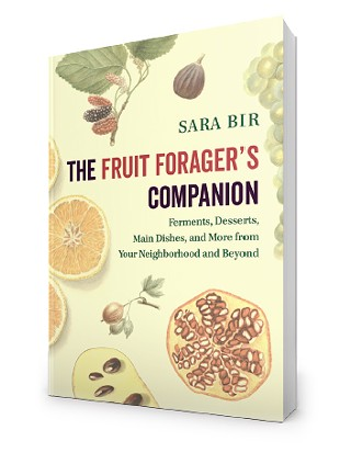 fruitforagerscompanioncover.jpg