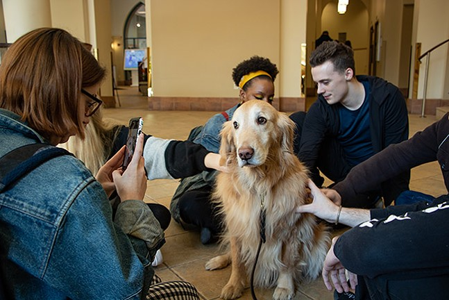 Brooke visits Point Park University students during midterm exams. - CP PHOTO: MEGAN GLOECKLER