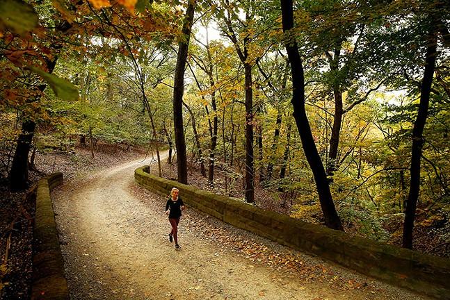 Stella Carne runs through the Bridle Trail at Schenley Park in 2019. - CP PHOTO: JARED WICKERHAM