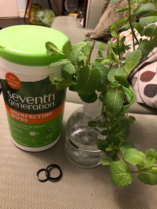 "A COVID-19 porch wedding ensemble of disinfecting wipes, hand sanitizer, kitchen window mint ""bouquet,"" and discount Amazon rings. - PHOTO: ALLISON RUPPERT"