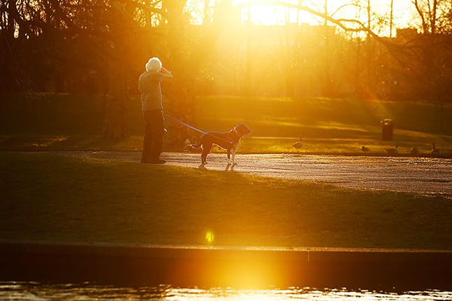 A resident walks his dogs past Lake Elizabeth in Allegheny Commons Park on the North Side. - CP PHOTO: JARED WICKERHAM