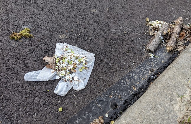 Discarded PPE glove on a street in Morningside - CP PHOTO: AMANDA WALTZ