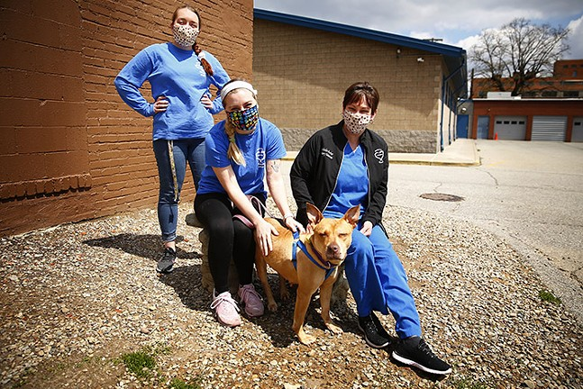Humane Animal Rescue employees Alex Trybus, adoptions; Abbey Kaufman, animal caretaker; and Michelle Baker, veterinary technician, pose for a portrait with Ruby, a 3 year-old pit bull mix who is available for adoption, in the North Side on Sat., April 18, 2020. - CP PHOTO: JARED WICKERHAM