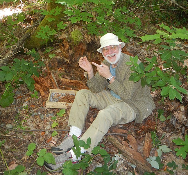 Tim Pearce doing field work in California last summer, sieving leaf litter looking for tiny snails - TIM PEARCE