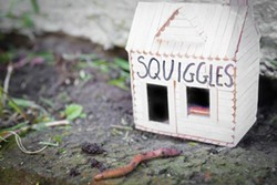 Squiggles rolls over a lot, but can't really fetch, or anything - PHOTO ILLUSTRATION BY RENEE ROSENSTEEL