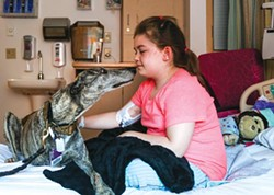 Pet therapy: Lulu visits patients at Children's Hospital - PHOTO BY MIKE SCHWARZ