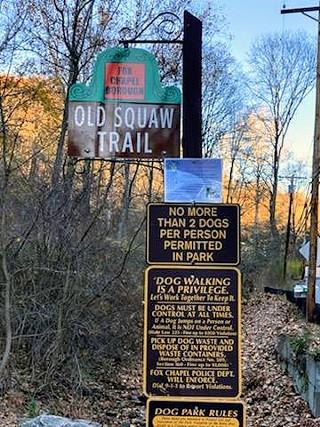 Old Squaw Trail in Fox Chapel - PHOTO: MANDY STEELE