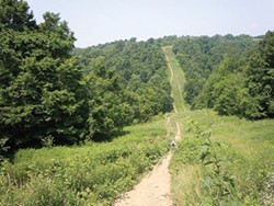 Hikers traversing downhill on a section of the Rachel Carson Trail near Emmerling Park in Indiana Township - PHOTO COURTESY OF JEN BRAUN