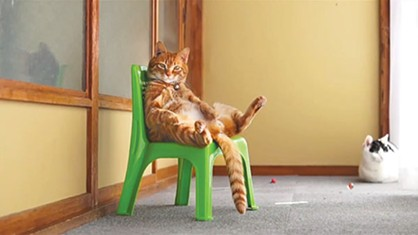 """Cat Sitting in a Chair 2014 #2,"" by かご猫 Blog 4."