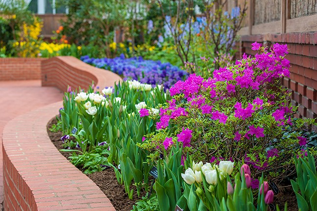 Spring Flower Show: Canopy of Color at Phipps Conservatory and Botanical Gardens, see Mon., March 15 for more details - PHOTO: PHIL JOHNSON II