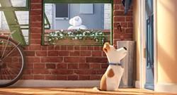 The Secret Life of Pets, July 8