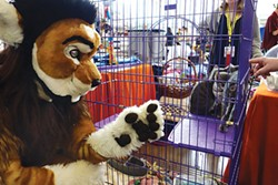A furry checks out adoptable kittens at Anthrocon. - PHOTO COURTESY OF AMY CRAWFORD/WESTERN PA HUMANE SOCIETY