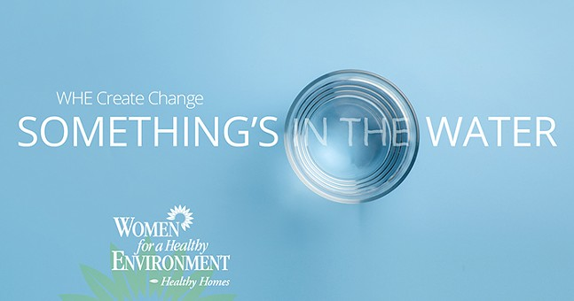 """Women for a Healthy Environment released its """"Something's in the Water"""" report April 20, 2021."""