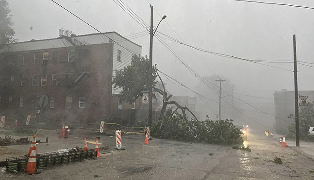 Fallen tree and power line at the intersection of Montclair Street and Greenfield Avenue, in Greenfield on June 13. - CP PHOTO: JARED WICKERHAM