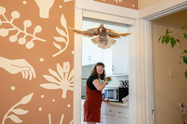 Cooper flies free through Garrett's dining room. - CP PHOTO: KAYCEE ORWIG